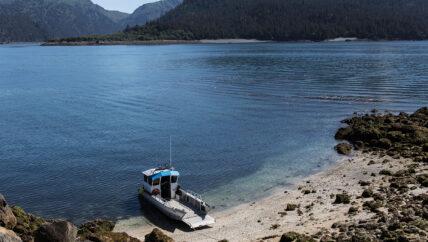 Alan's Water Taxi in Kachemak Bay Homer, Alaska